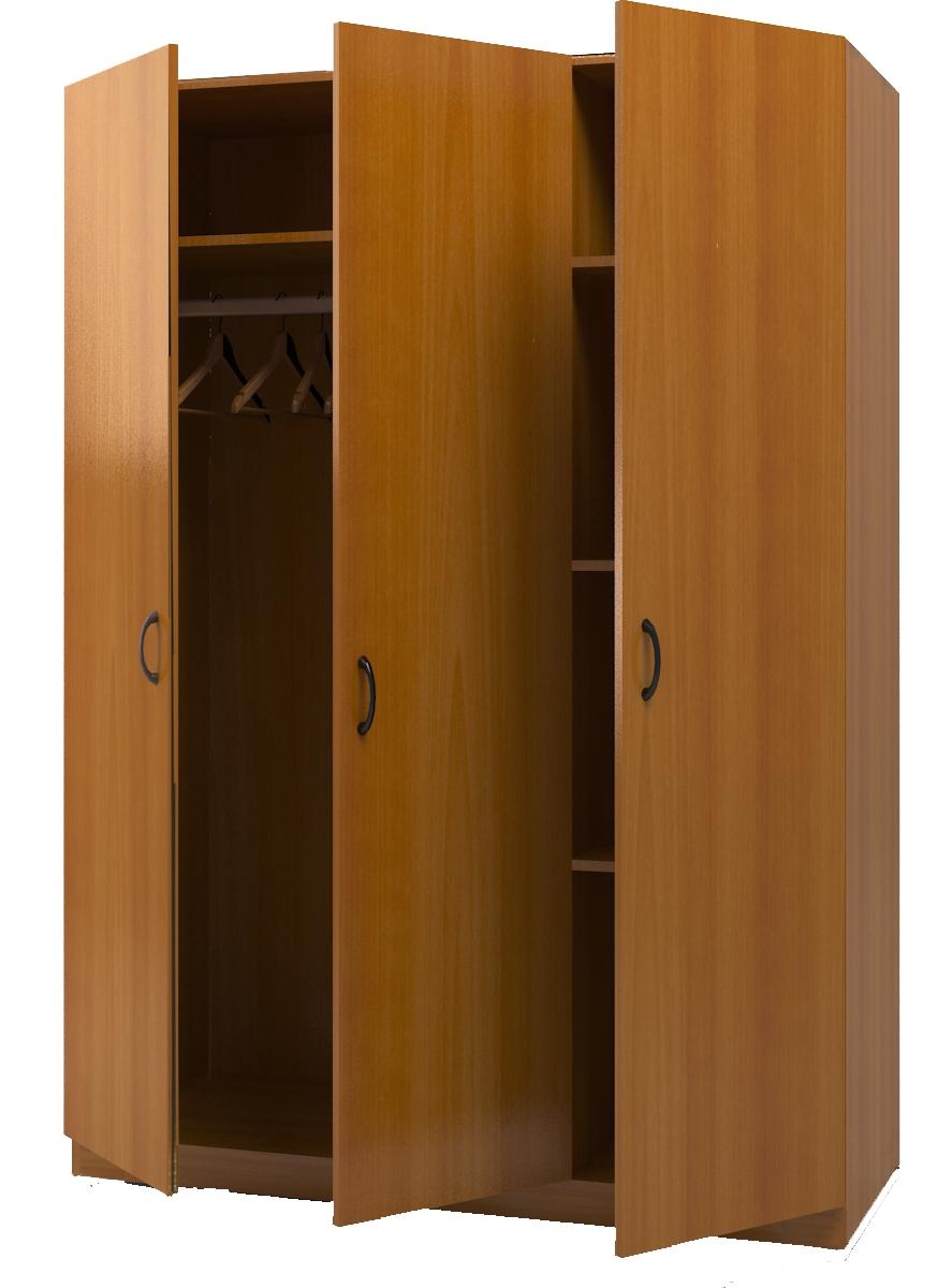 Гардеробный шкаф - купить двухстворчатый, трехстворчатый шка.